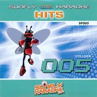 Sunfly Hits Vol.5