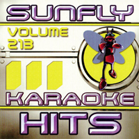 Sunfly Hits Vol.213