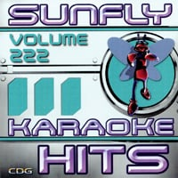 Sunfly Hits Vol.222