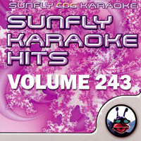 Sunfly Hits Vol.243