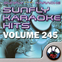Sunfly Hits Vol.245