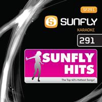 Sunfly Hits Vol.291 - May 2010
