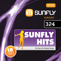 Sunfly Hits Vol.324 - February 2013