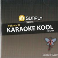 Karaoke Kool Vol. 37