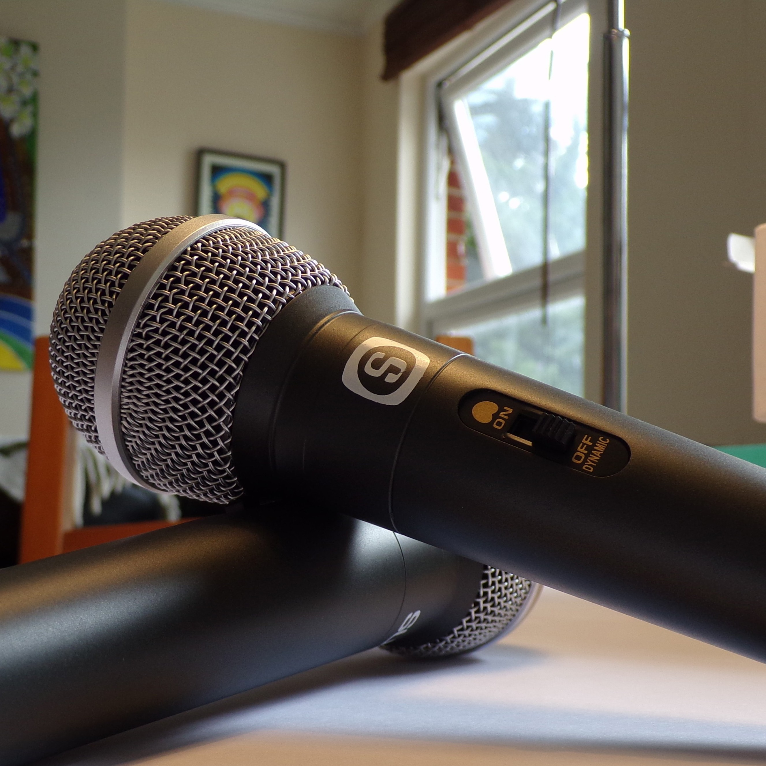 Sunfly Dynamic Karaoke Corded Microphone