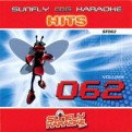 Sunfly Hits Vol.62 - Hits of the 50's