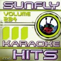 Sunfly Hits Vol.234