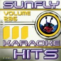 Sunfly Hits Vol.236