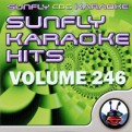 Sunfly Hits Vol.246