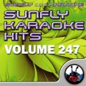 Sunfly Hits Vol.247