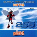 Sunfly Hits Vol.253