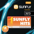 Sunfly Hits Vol.323 - January 2013