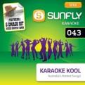Karaoke Kool Vol. 43