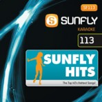 Sunfly Hits Vol.113 - Hits Of The 80's