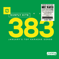 Sunfly Hits Vol.383 - January 2018 + 15 Track Voucher